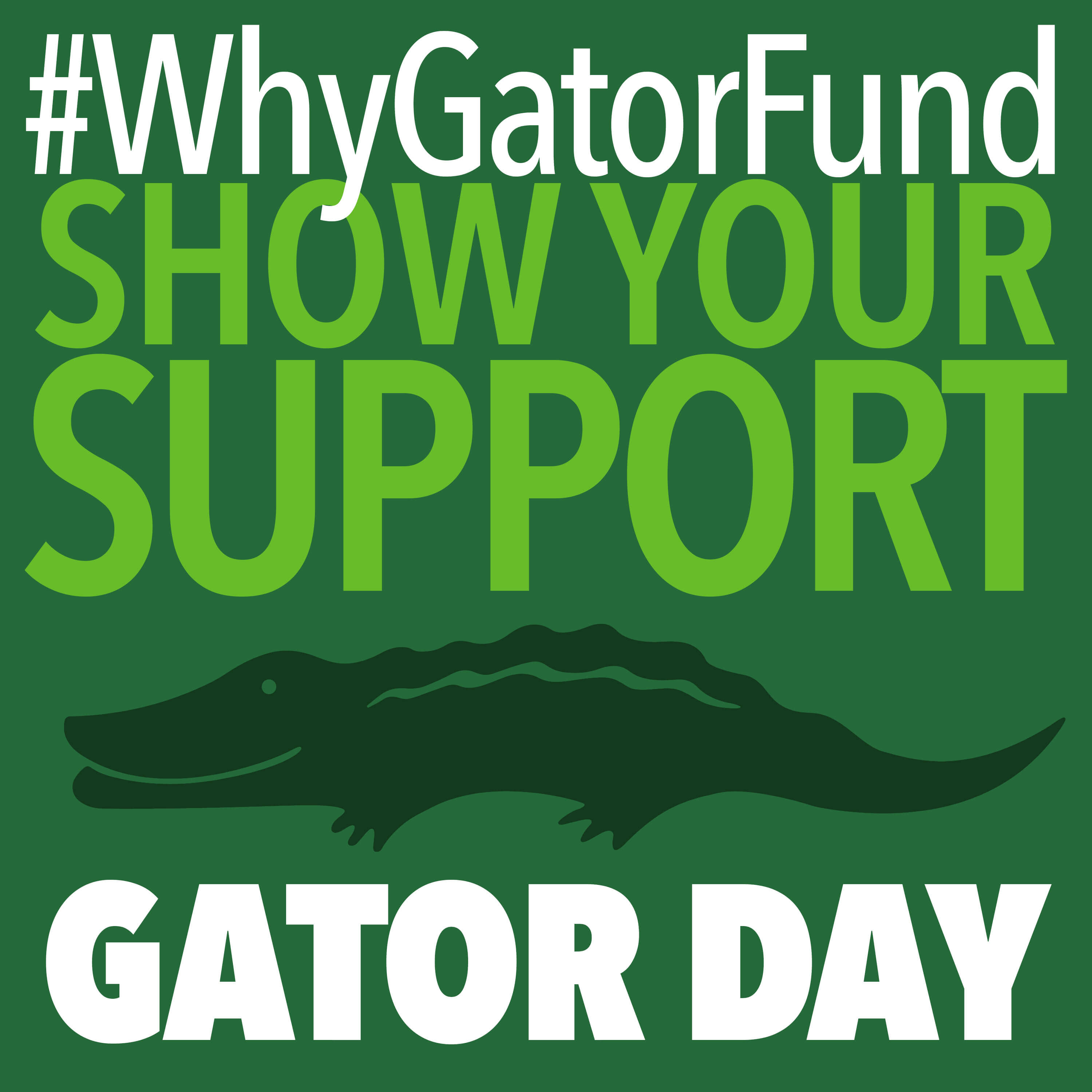 It's Gator Day! Today, Thursday, October 13